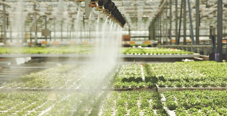 سه گانه تکنولوژی های گلخانه ای برای افزایش تولید