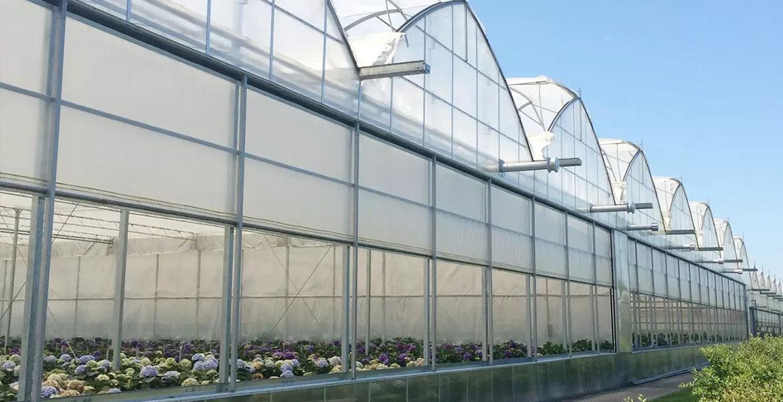 معیارهای انتخاب پوشش گلخانه