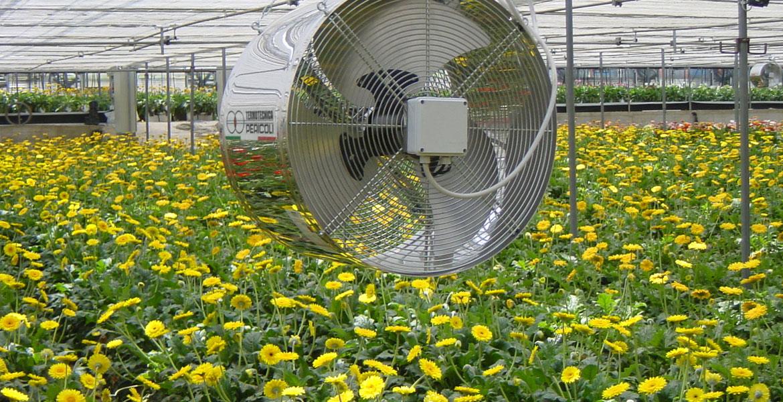 حفظ گرما در داخل گلخانه
