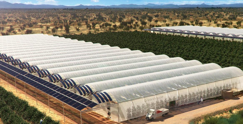 تاسیسات مورد نیاز پرورش گیاهان گلخانه ای